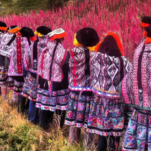 Harvesting Quinoa at Amura Village during our Women's Journey to Peru, May 2013